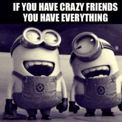 If You Have Crazy Friends. Funny Minion, Minion Quotes
