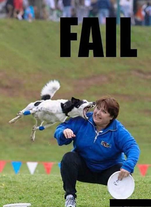 perfect click, perfect pics, funny images